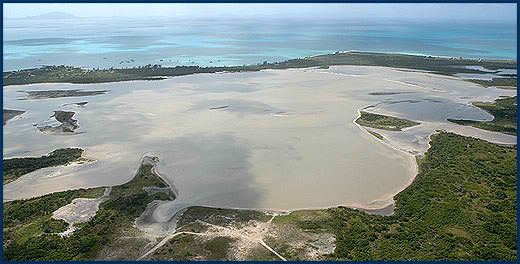 Anegada_Flamingo_Pond