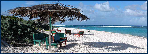 Anegada_Loblolly_Beach